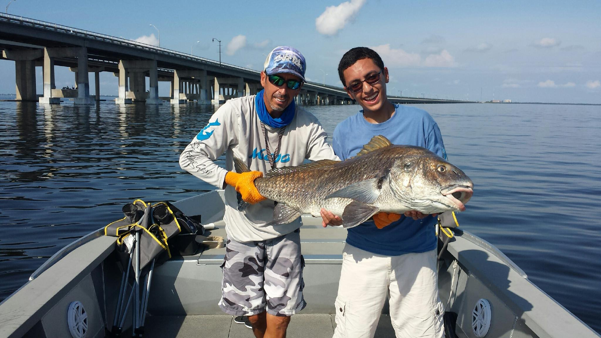 Black drum archives hotshot guide services for Tampa bay fishing guides