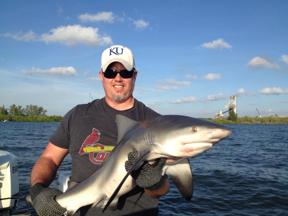Shark guided fishing trips hotshot guide services for Tampa fishing outfitters